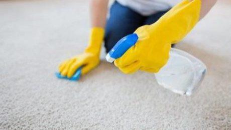 nettoyage professionnel de moquettes ou de tapis